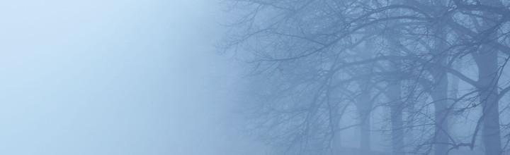 momente | clarapark im nebel 2012